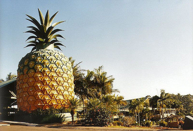 The Big Pineapple in Queensland. A symbol of hospitality.