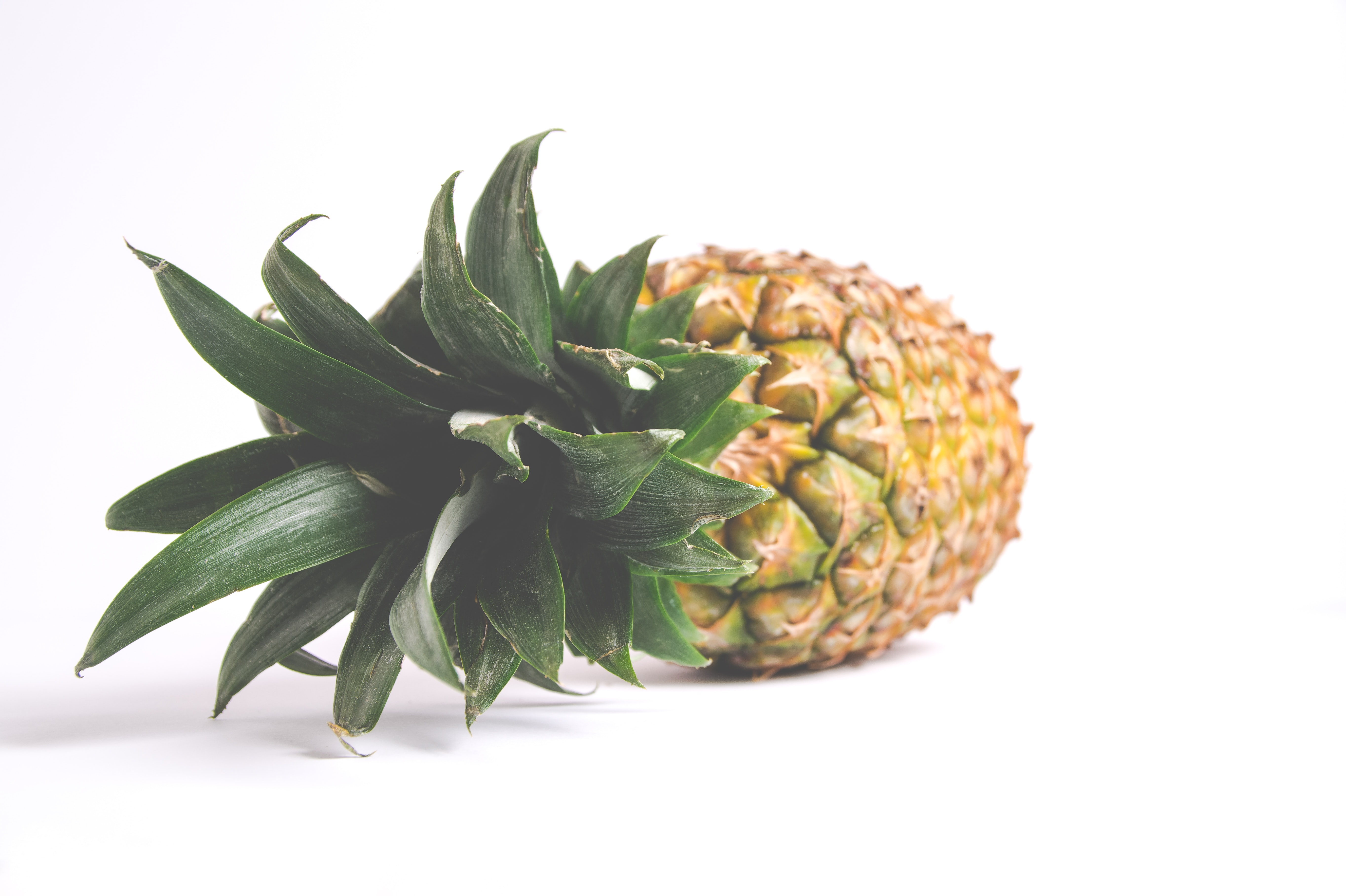 A fresh and ripe pineapple laying on its side with crown intact.