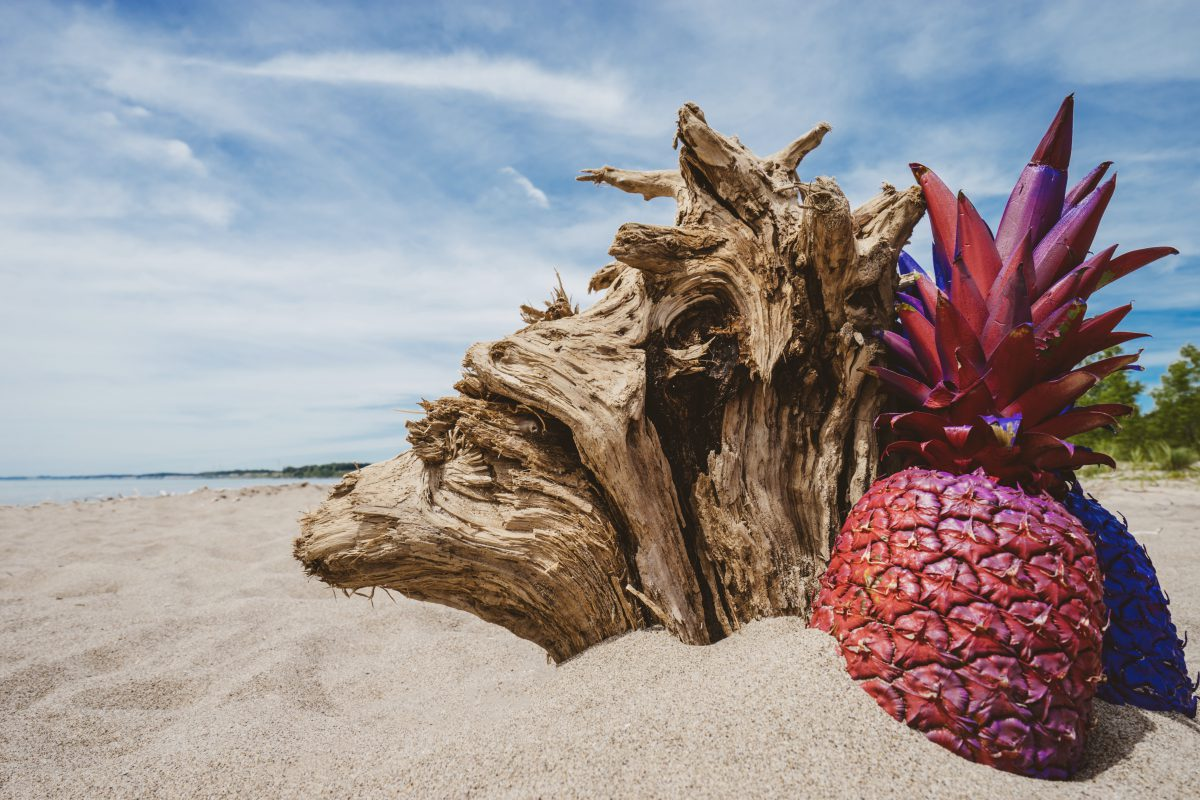 red pineapple on beach