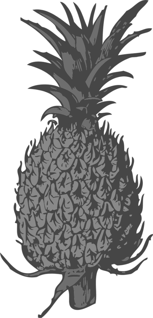 pineapple clipart black and white detailed