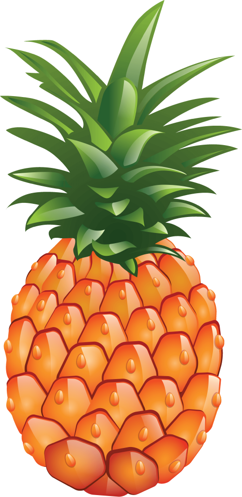 large pineapple clipart image