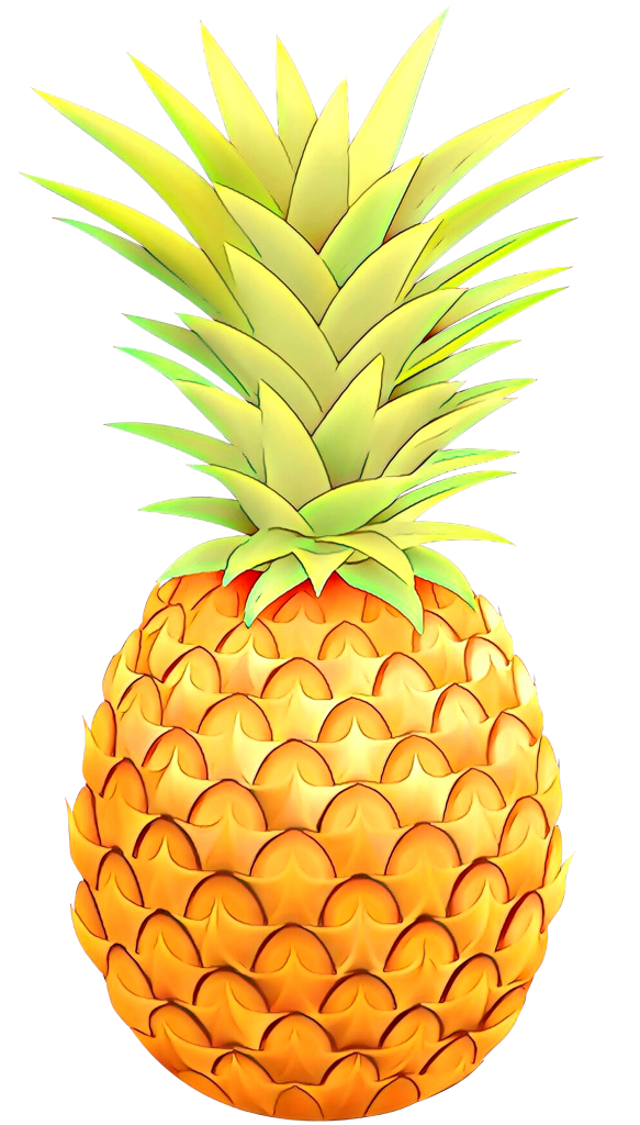 pineapple clipart detailed hand-drawn image